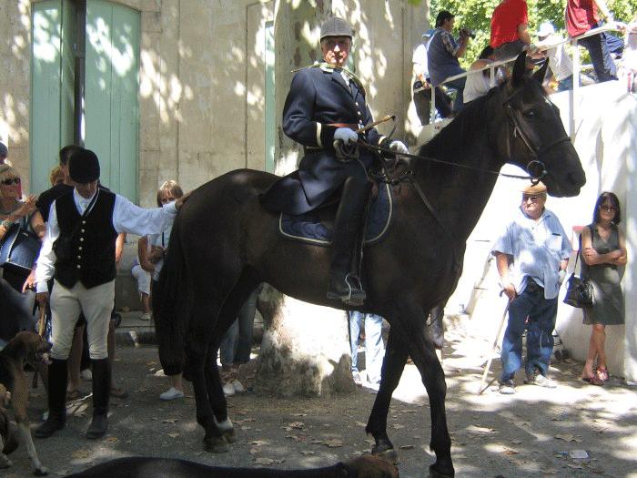 démonstration-foire-aux-chevaux